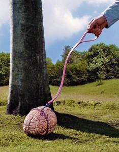 Mozek na vodítku
